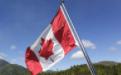 加拿大签证案例分析