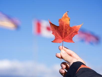 加拿大签证类型多不多?都有哪些?