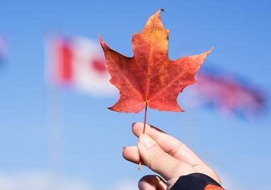 提醒赴加拿大中国游客注意交通安全